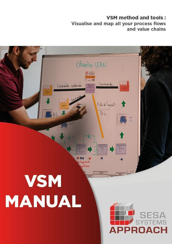 Guida VSM
